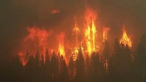 Groźne pożary
