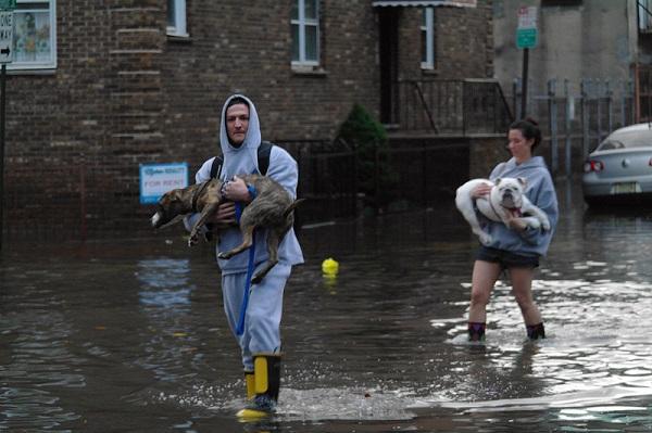 Powodzie
